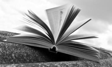Bibliotecas, derechos de autor y promoción cultural